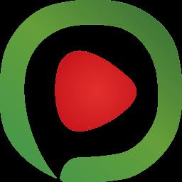 西瓜影音去广告去多余进程工具v1.0 绿色版