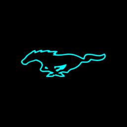 章鱼搜索神器手机版(bt磁力种子搜索)