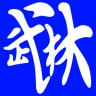 自学武术(武术讲解)