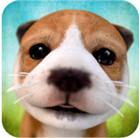 小狗模拟器无限金币