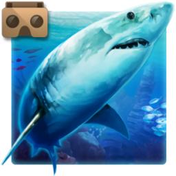 口袋VR水族馆