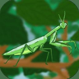 螳螂猎手官网