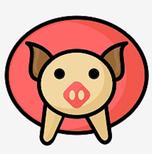 猪头高速流畅网络电视