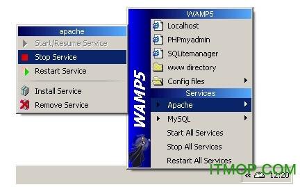 Windows Apache Mysql PHP集成安装环境(WampServer) v3.2.0 多国语言安装版 0