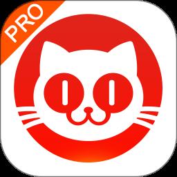 猫眼票房分析手机版