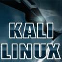 kali linux系统
