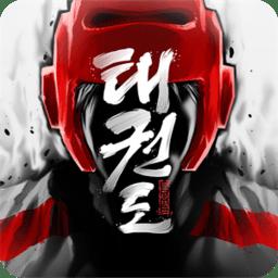 全球跆拳道大赛中文版