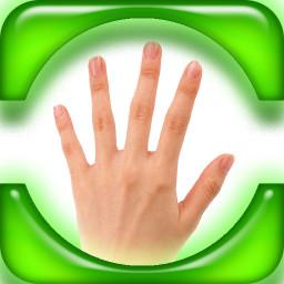 手指算法特�e版