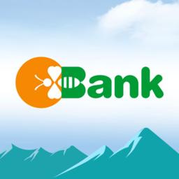 新疆国民村镇银行app