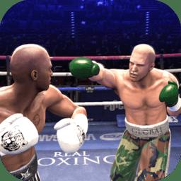 真实拳击2019