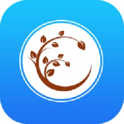 饭团gdragon
