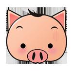 小猪快充手机版(流量充值平台)