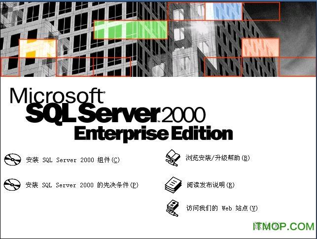 Microsoft SQL Server 2000 简体中文企业版 0