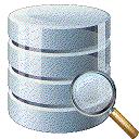 P6Spy(sql监控跟踪工具)