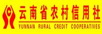 云南农信社