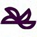 南华期货E版下单软件v1.0 CA认证版