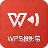 wps投影����X版