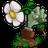 植物大战僵尸96单机版