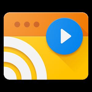 网络视频串流Web Video Caster