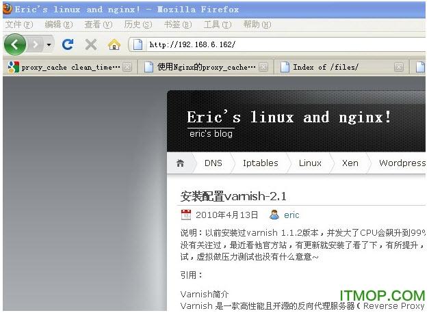 Nginx for windows(网页Web服务器) v1.19.7 官方最新版 0