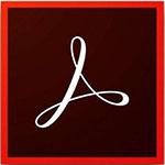 Adobe Acrobat XI Pro��ɫ��