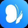 蓝蝶(收入记录)