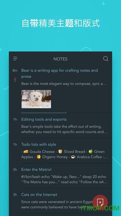 Bear笔记软件 v1.0 安卓版 1