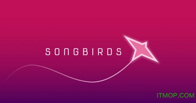 songbirds游戏