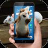 手机屏幕养老鼠软件