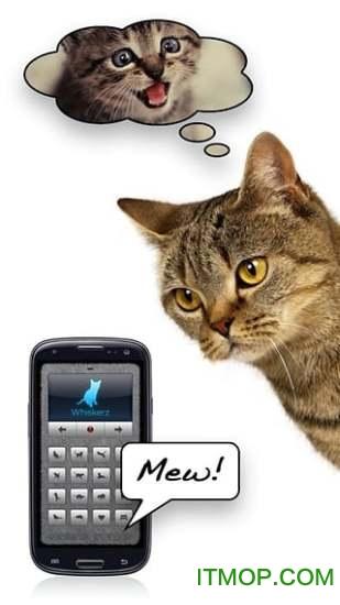 猫语翻译器ios版