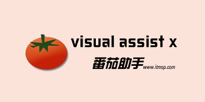 visual assist x下�d_visual assistx破解_番茄助手visualassistx