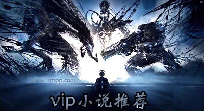 vip小说