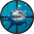 水下鲨鱼狙击猎人内购破解版
