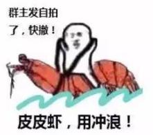 皮皮虾我们走表情包