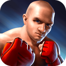 3D�C合格斗(MMA Fighting 3D)