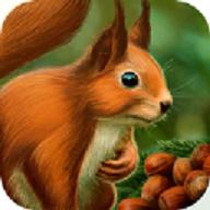 松鼠模拟器破解版(Squirrel Animal simulator)