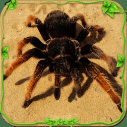 蜘蛛模拟器无敌版