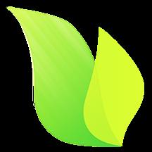绿果网手机版