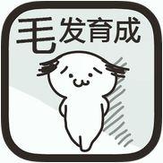 毛发育成app中文版