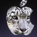 苹果雪豹系统东皇pc破解版绿色免费版