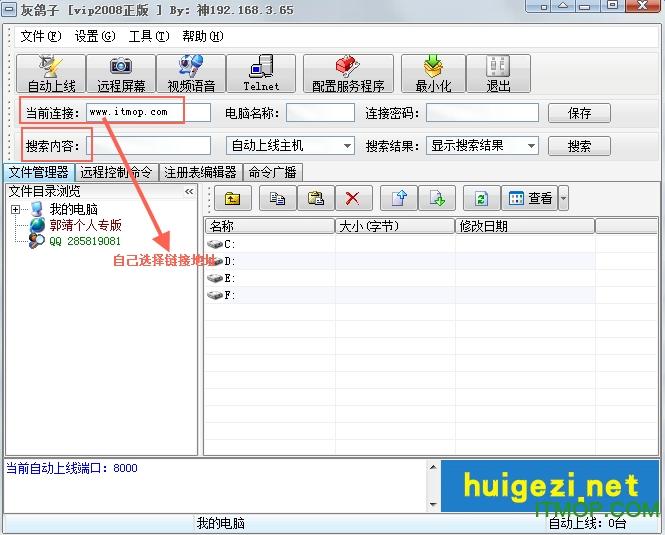 灰鸽子vip2008中文版