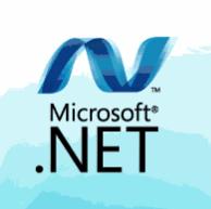 .NET Framework�������л���64λ