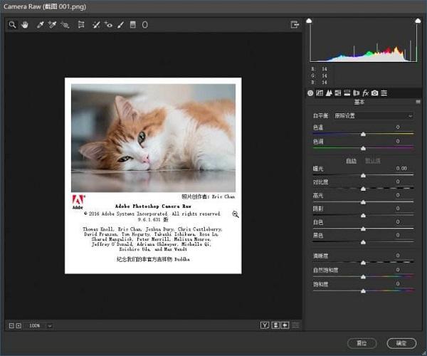 camera raw10.0中文版