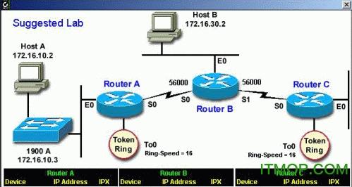Sybex Toddrouter路由器/交换机模拟器 免费版 1