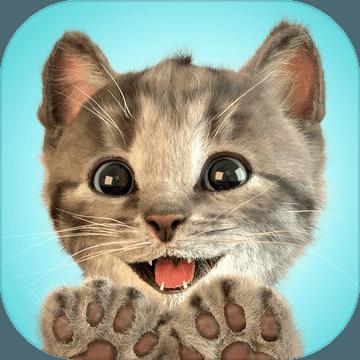 Little Kitten我最喜爱的猫猫养成游戏