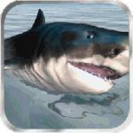 鲨鱼模拟器3D内购破解版
