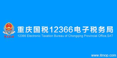 重庆国税软件