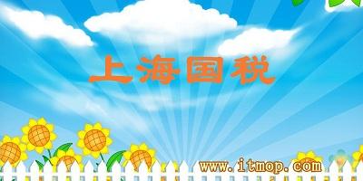 上海国税app