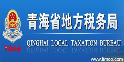 青海国税软件