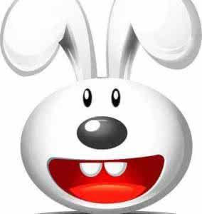 超级兔子桌面秀(桌面美化软件)